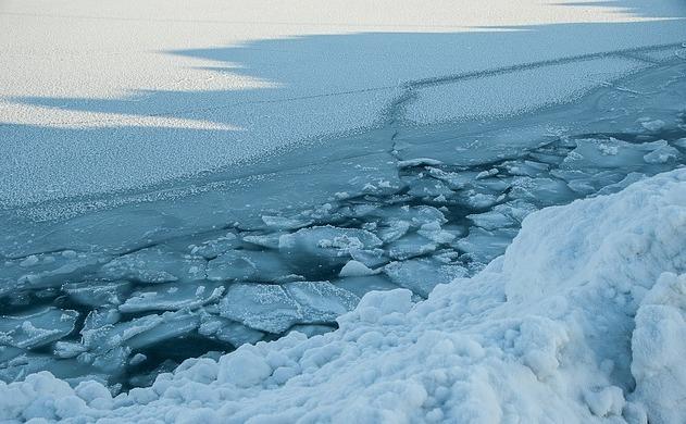 Ghreţă în Oceanul Artic