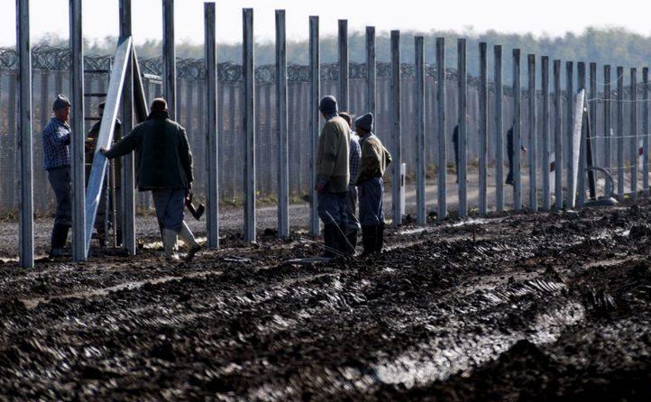 Muncitorii construiesc un gard la frontiera ungaro-sârbă, în apropiere de satul Gara, Ungaria, 27 octombrie 2016.