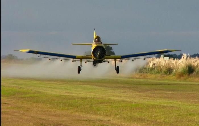 Expunerea la pesticide agricole afectează nou născuţii  (Santiago Nicolau)