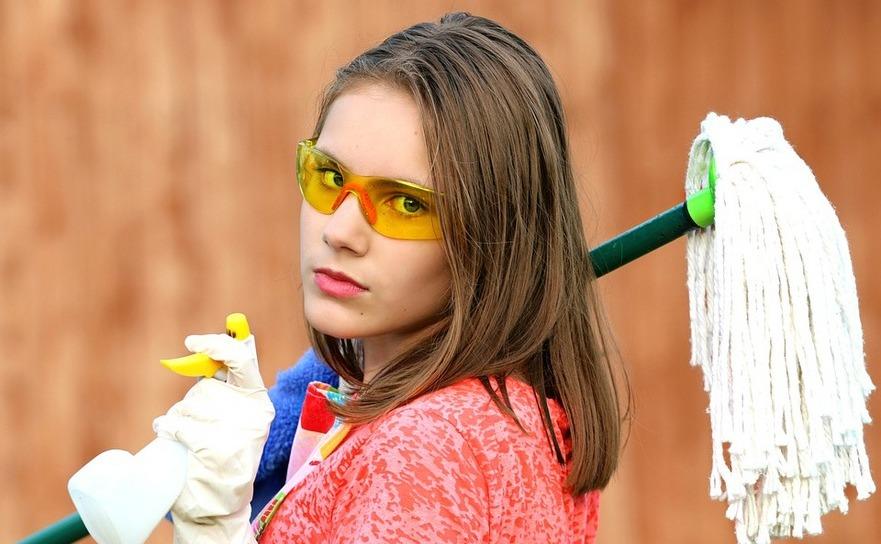 Menaj, muncă casnică