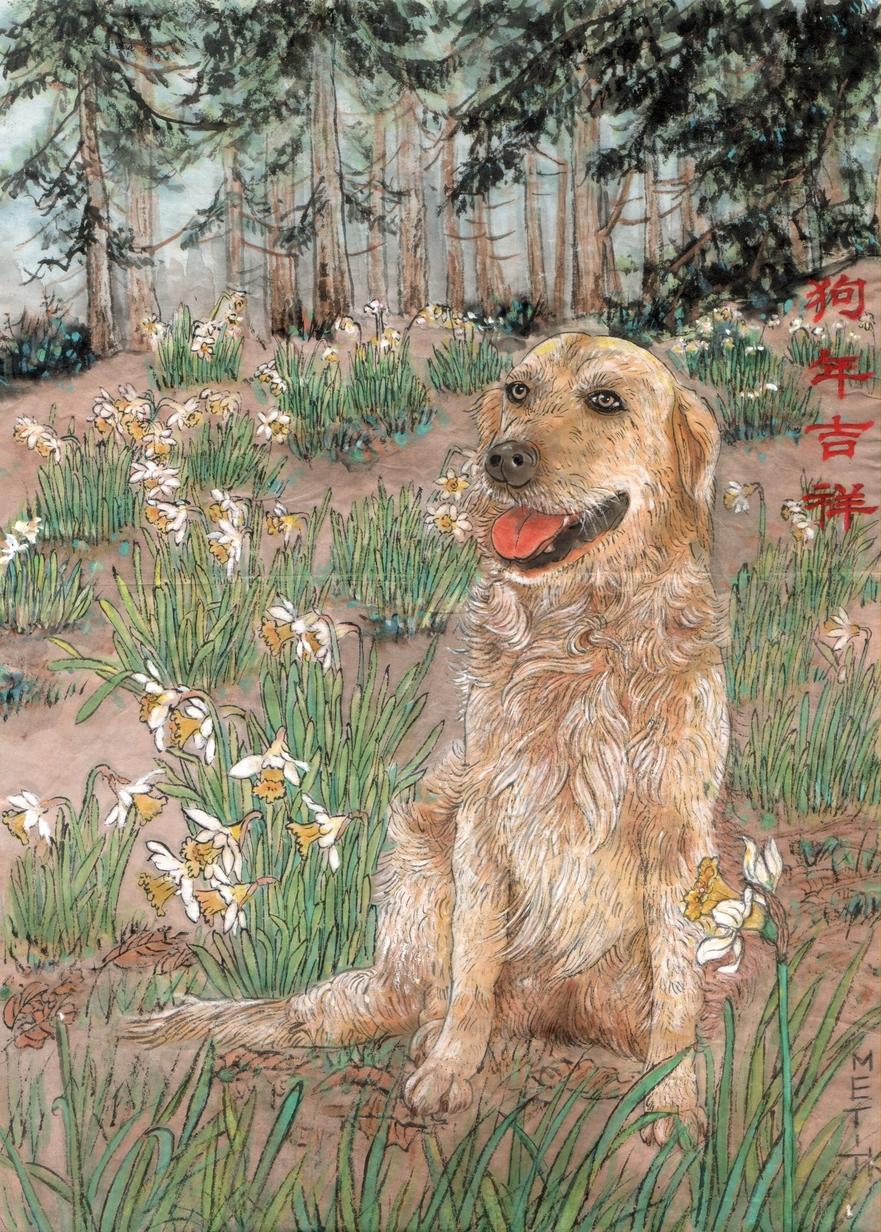 Câinele poate fi cel mai credincios prieten oamenilor - el vă aduce un An Nou Fericit Chinezesc!