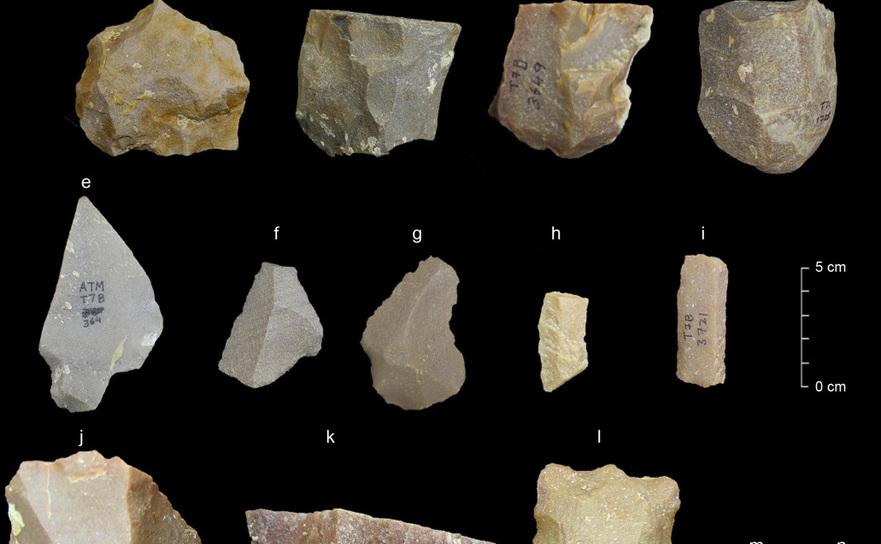 Unelte de piatră descoperite la Attirampakkam, un sit arheologic din sudul Indiei