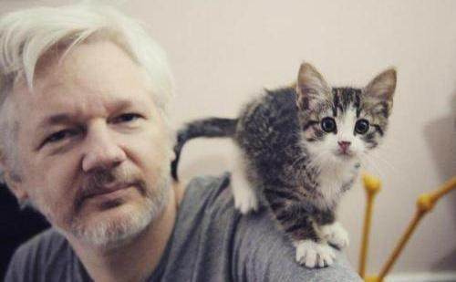 Assange, în puşcăria numită Ambasada Ecuadorului din Londra