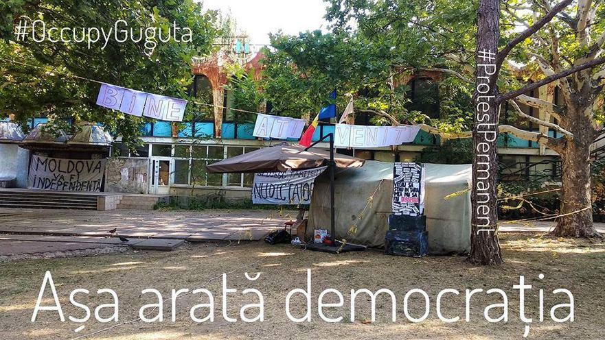Occupy Guguţă a revenit la cafeneau Guguţă