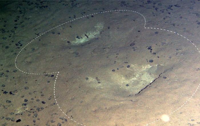 Imaginea furnizată de camera oblică de la Autosub6000 Mission 79 (M79) arată două depresiuni superficiale