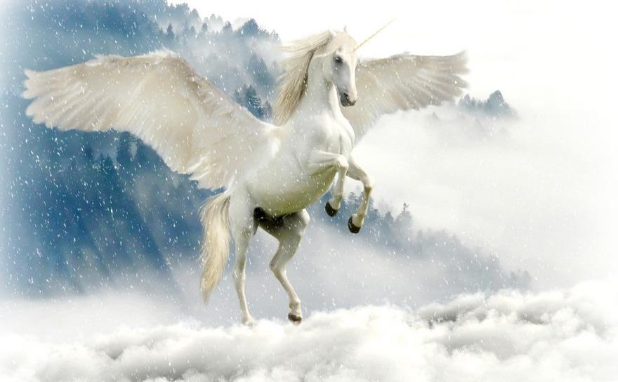 Inorogul mai este numit şi Unicorn sau Licornă, fiind pomenit şi în scrierile lui Aristotel, Saint Thomas, Saint Gregory, precum şi în povestirile despre Gingis-Han.