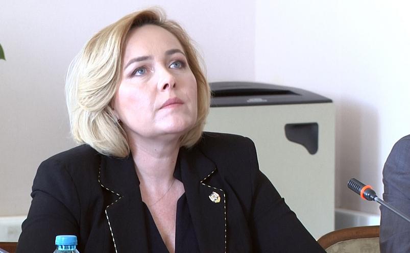 Carmen Dan, în Comisia de Apărare din Senat