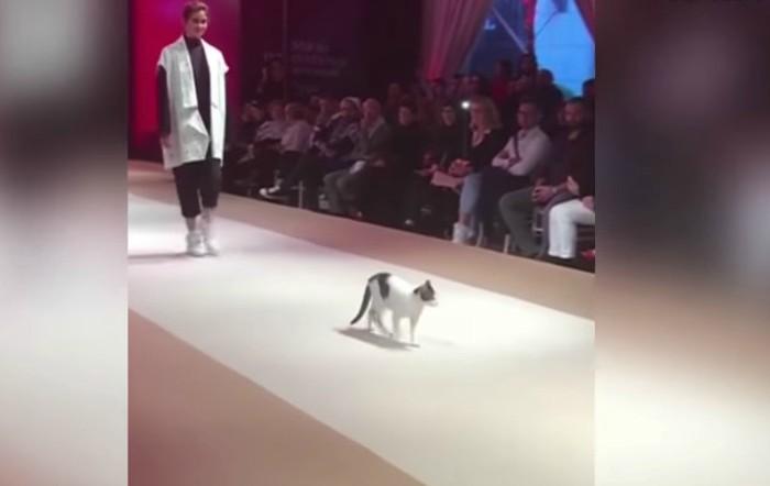 Esmod Internaţional Fashion Show, Istambul