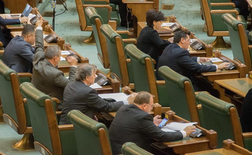 Vot în Plenul Senatului