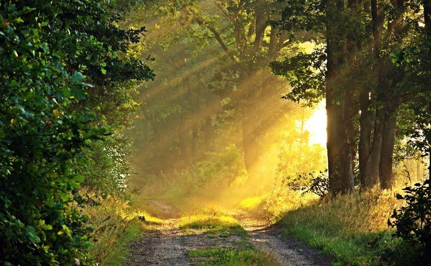 Razele solare pot îmbunătăţi starea de spirit.