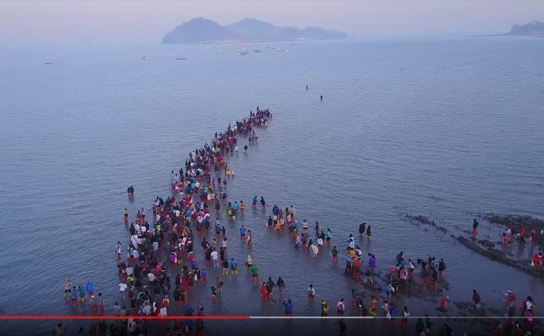 """Coreea de Sud: Insula Jindo - turistii incep traversarea marii spre Insula Modo, in timpul festivalului""""Jindo Sea-Parting"""" ."""