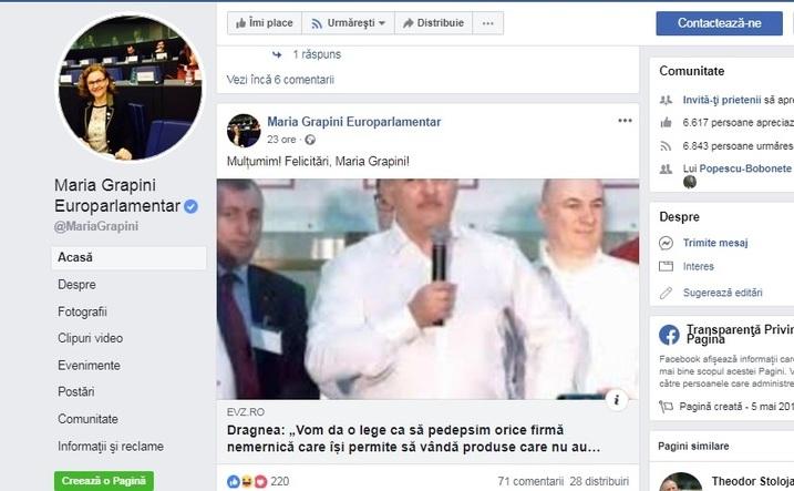 Pagina de Facebook a europarlamentarului Maria Grapini si postarea cu pricina.
