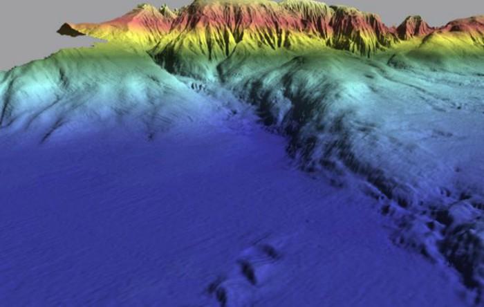 Zona albastră este                  Câmpia Abisală a Herradurei, zona plană de pe fundul mării în care s-a produs cutremurul din 1969