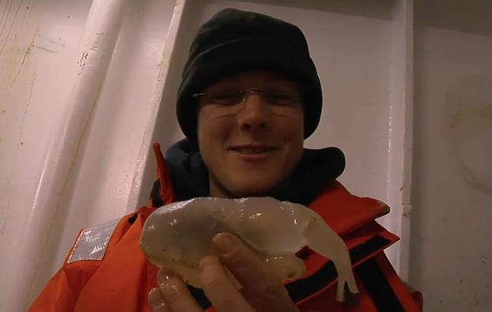 Creatură ciudată din fundul Oceanului Antarctic