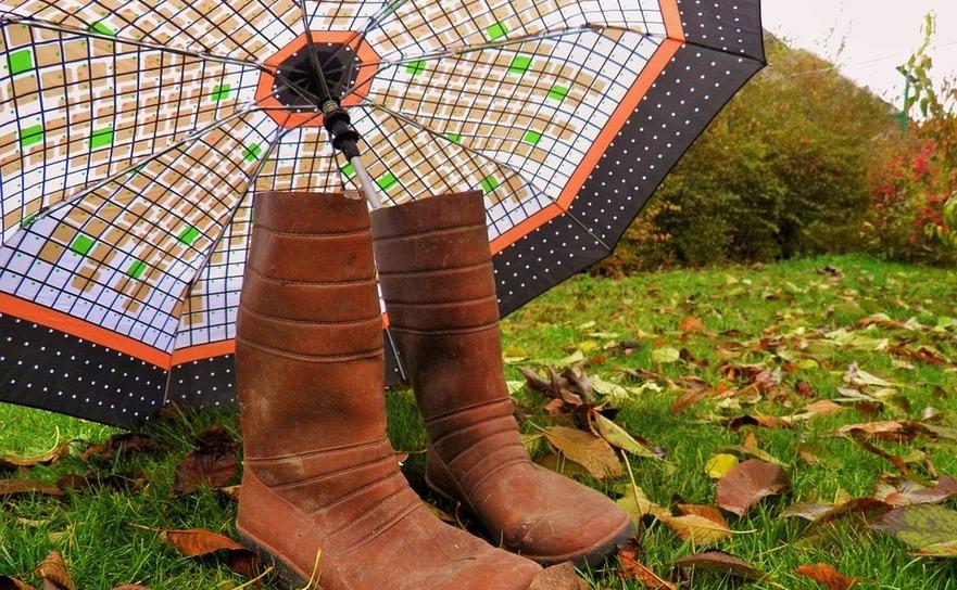 Ploaie de toamnă, umbrelă
