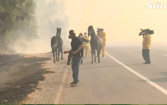 Incendiu în California