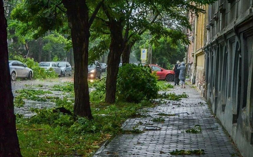 Crengi căzute pe jos şi pe maşini după o furtună