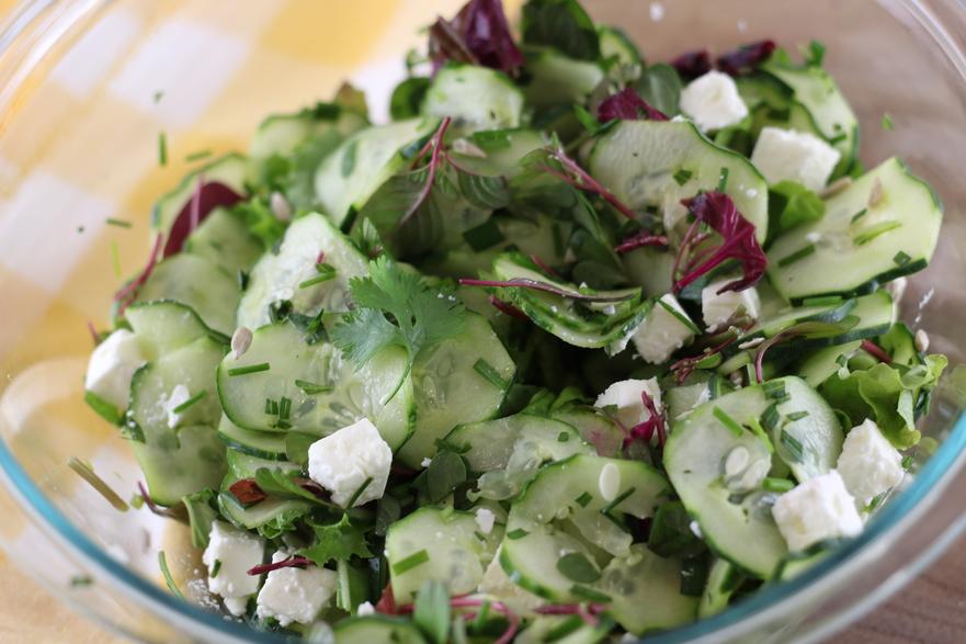 Salată de castraveţi cu stir roşu