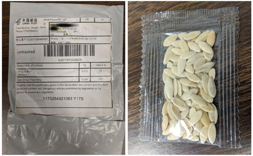 Colet misterios cu seminţe primit de americani din China