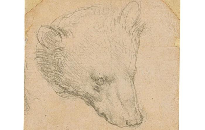 """""""Testo di orso"""" circa 1480, Leonardo da Vinci"""