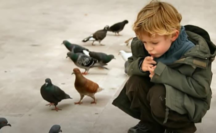 Copil ce dă dovadă de răbdare
