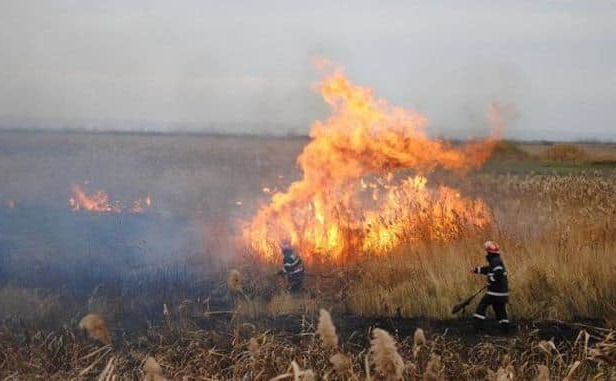 Mirişte incendiată, în sudul ţării